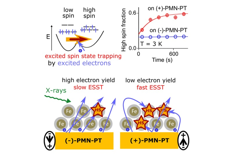 Excited Spin-State Trapping