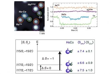 Identification of HoCo dimers and detection of their spin excitations