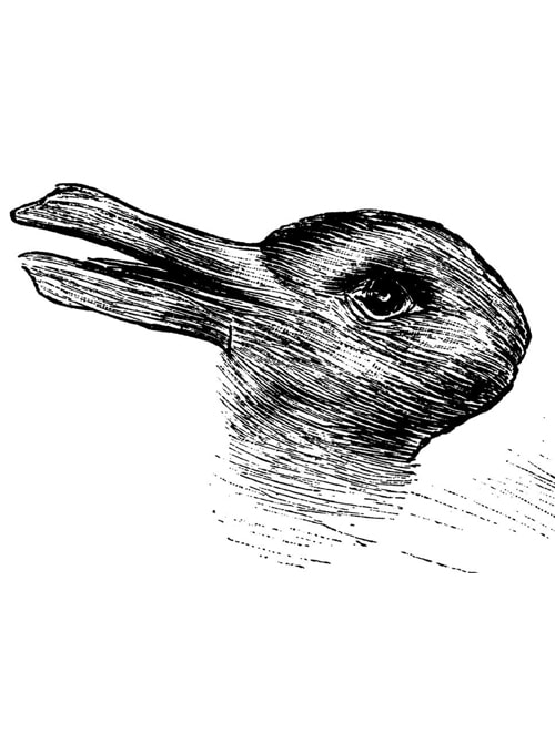 Duck-rabbit image