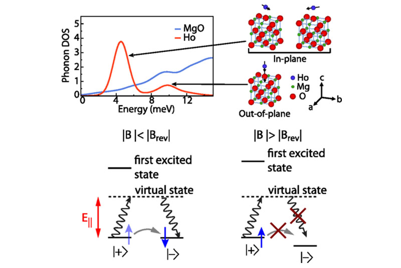 Calculated low-energy phonon DOS projected onto the Ho atom and MgO slab