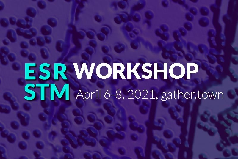 ESRSTMWorkshop